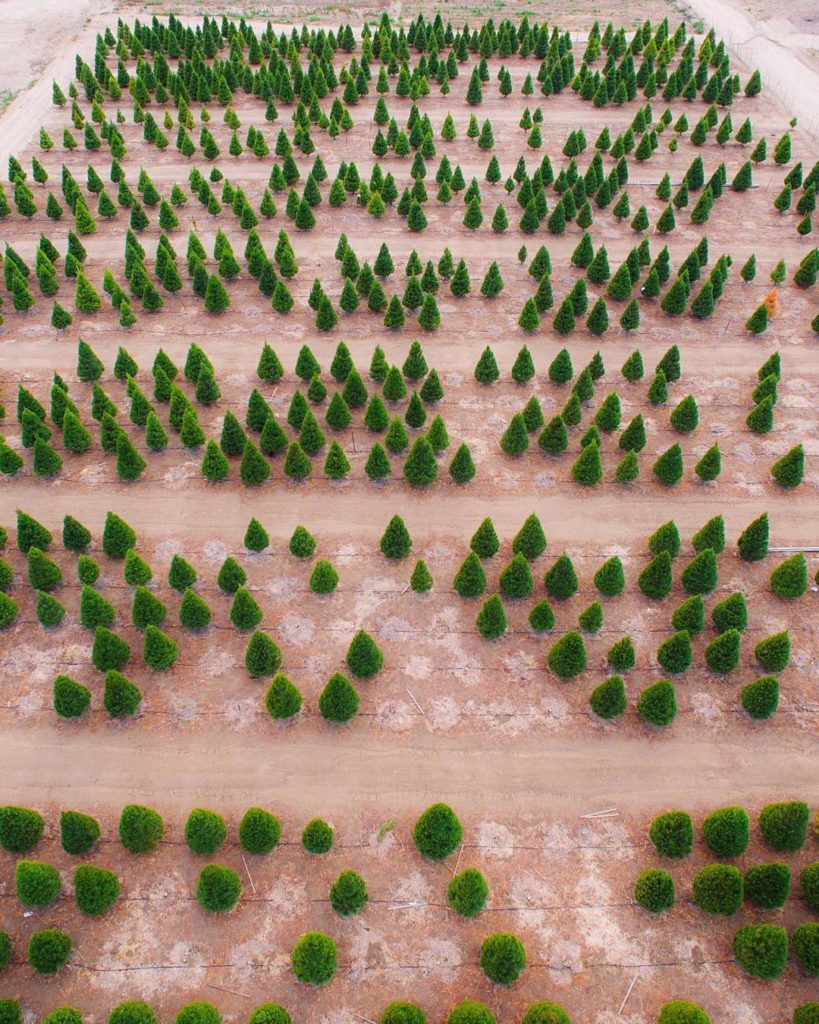 drone patterns pics
